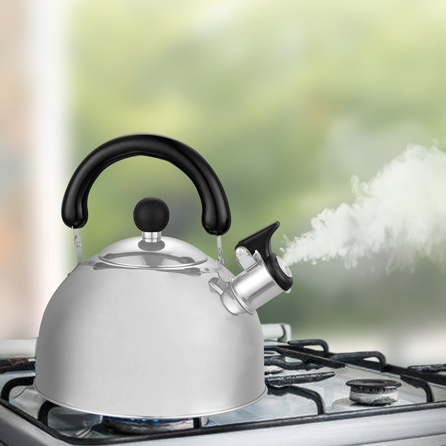 Masflex Stainless Steel Whistling Kettle